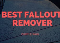 Best Fallout Remover – Purple Rain